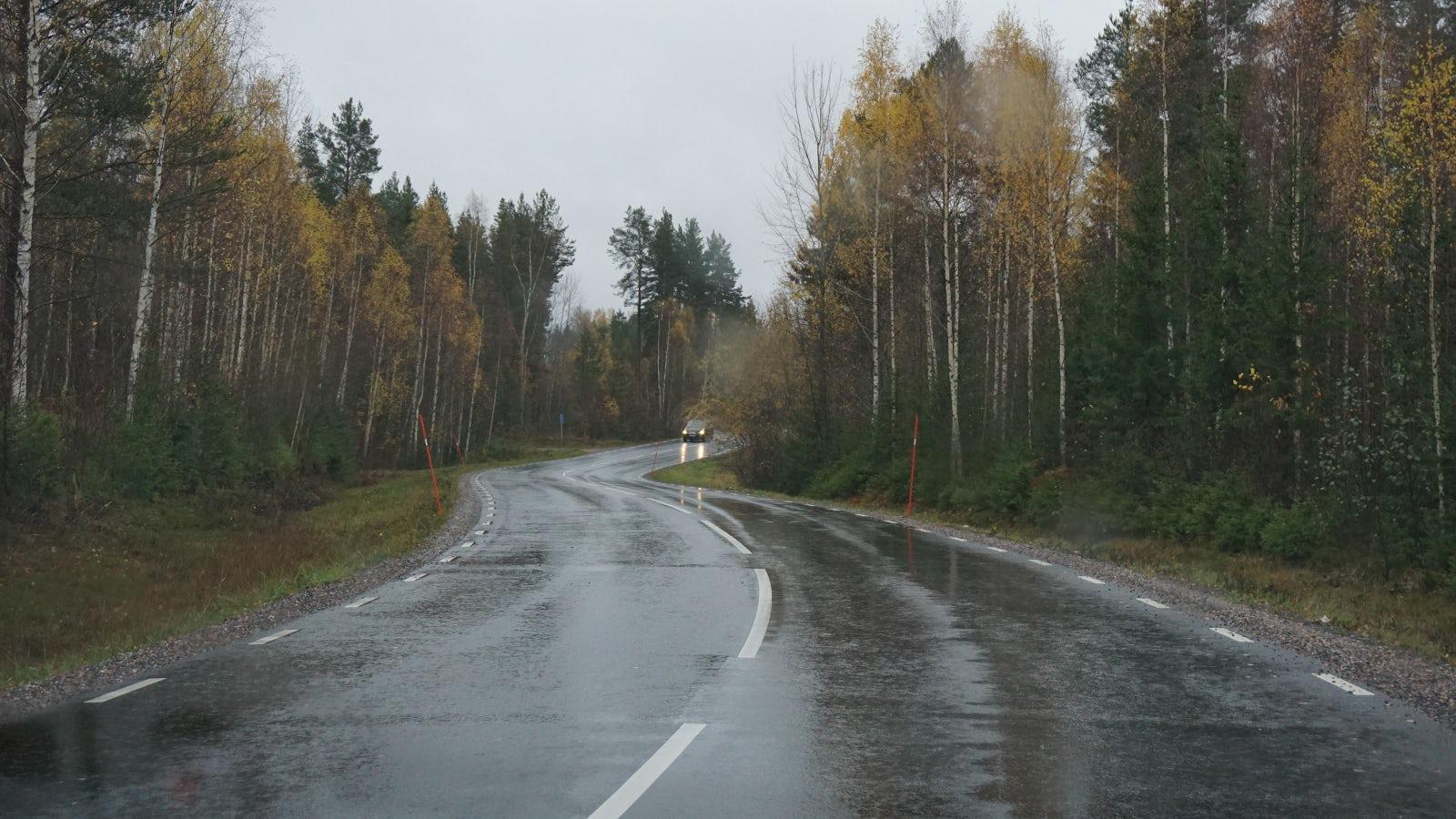Bild på kurvig väg där det nyligen har regnat.